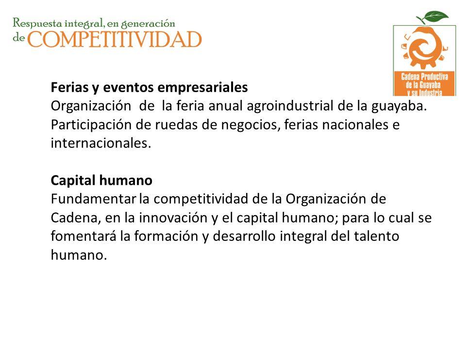 Ferias y eventos empresariales Organización de la feria anual agroindustrial de la guayaba.