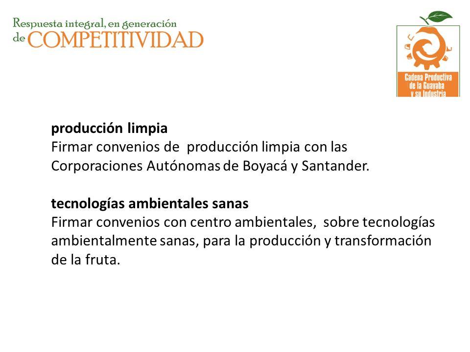 producción limpia Firmar convenios de producción limpia con las Corporaciones Autónomas de Boyacá y Santander.