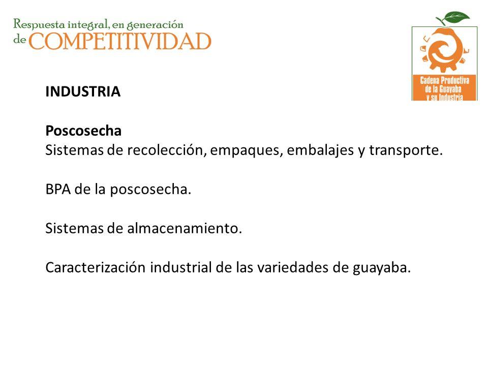 INDUSTRIA Poscosecha Sistemas de recolección, empaques, embalajes y transporte.