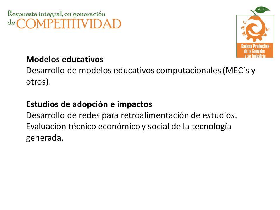 Modelos educativos Desarrollo de modelos educativos computacionales (MEC`s y otros).