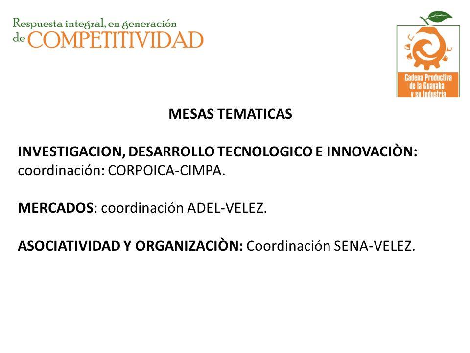 MESAS TEMATICAS INVESTIGACION, DESARROLLO TECNOLOGICO E INNOVACIÒN: coordinación: CORPOICA-CIMPA.