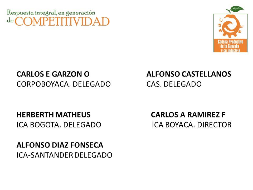 CARLOS E GARZON O ALFONSO CASTELLANOS CORPOBOYACA. DELEGADO CAS