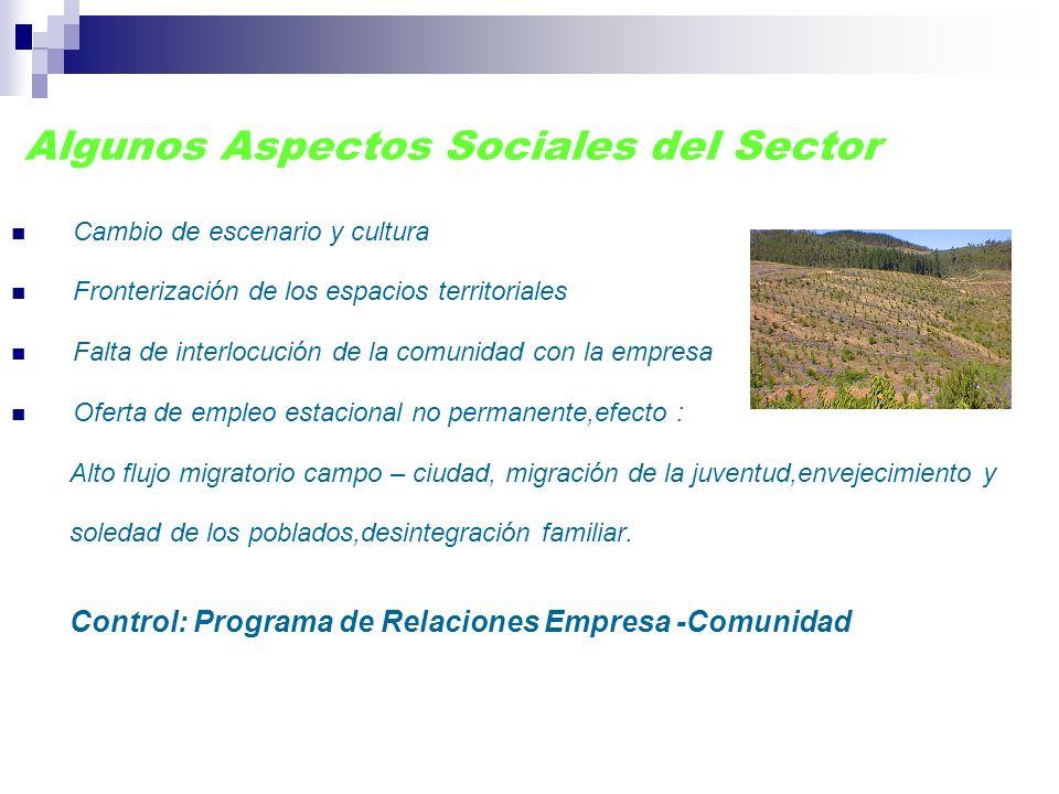 Algunos Aspectos Sociales del Sector