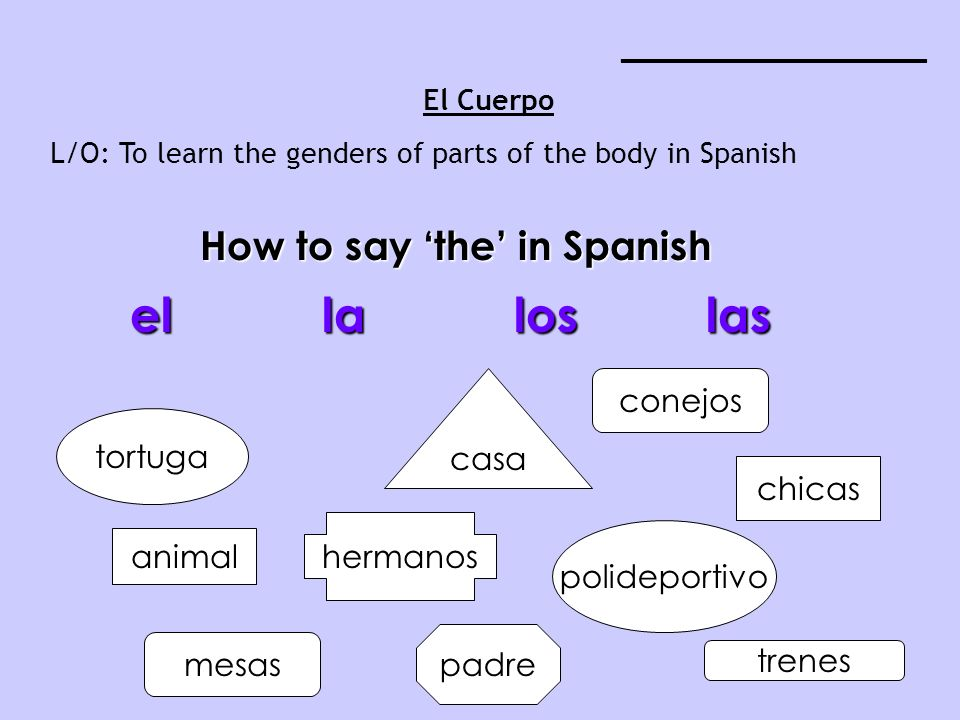 How to say 'the' in Spanish