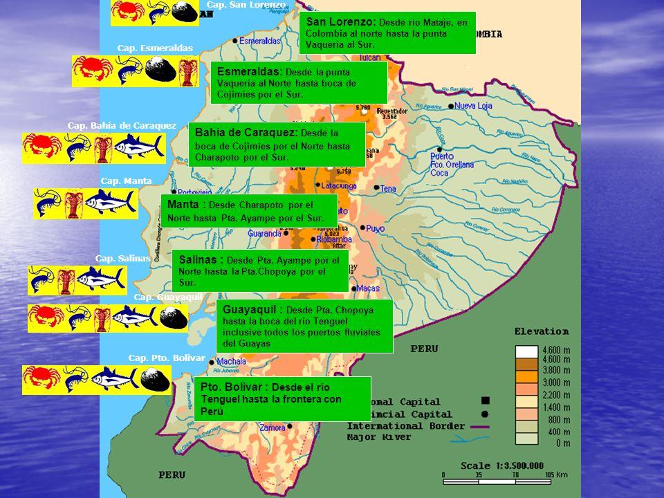 Manta : Desde Charapoto por el Norte hasta Pta. Ayampe por el Sur.
