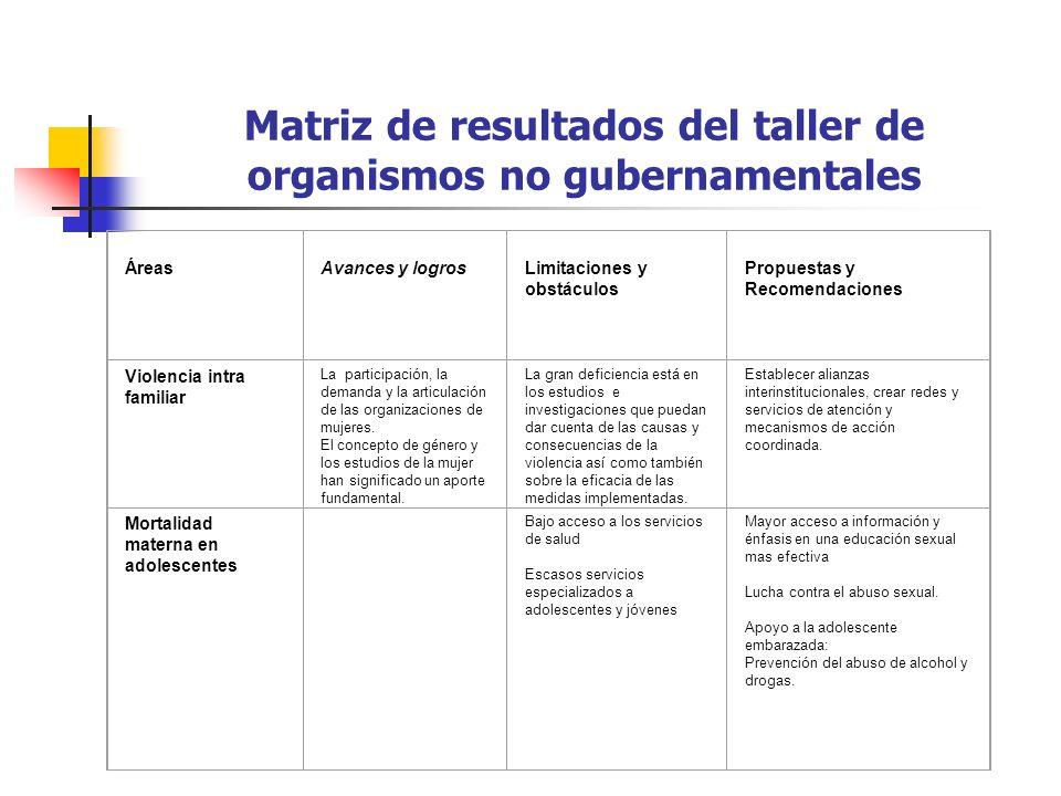 Matriz de resultados del taller de organismos no gubernamentales