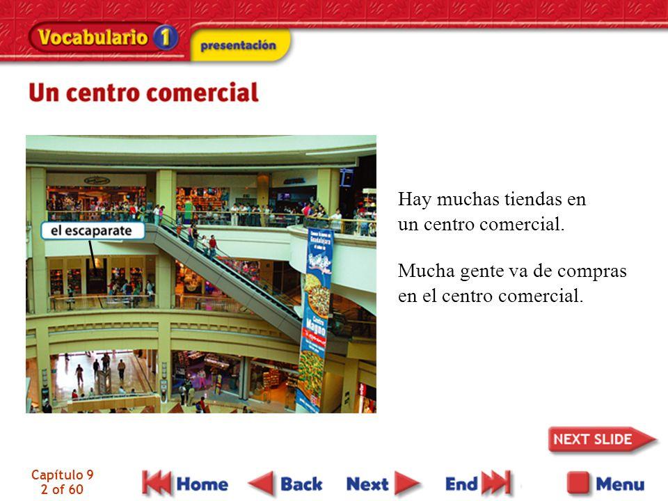 Hay muchas tiendas en un centro comercial.