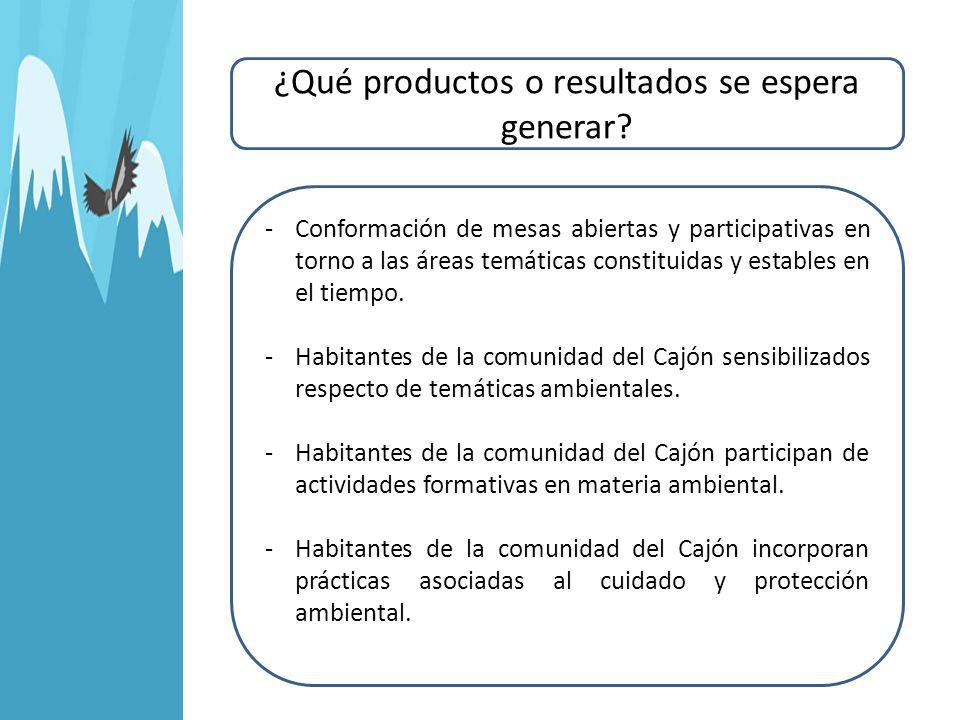 ¿Qué productos o resultados se espera generar