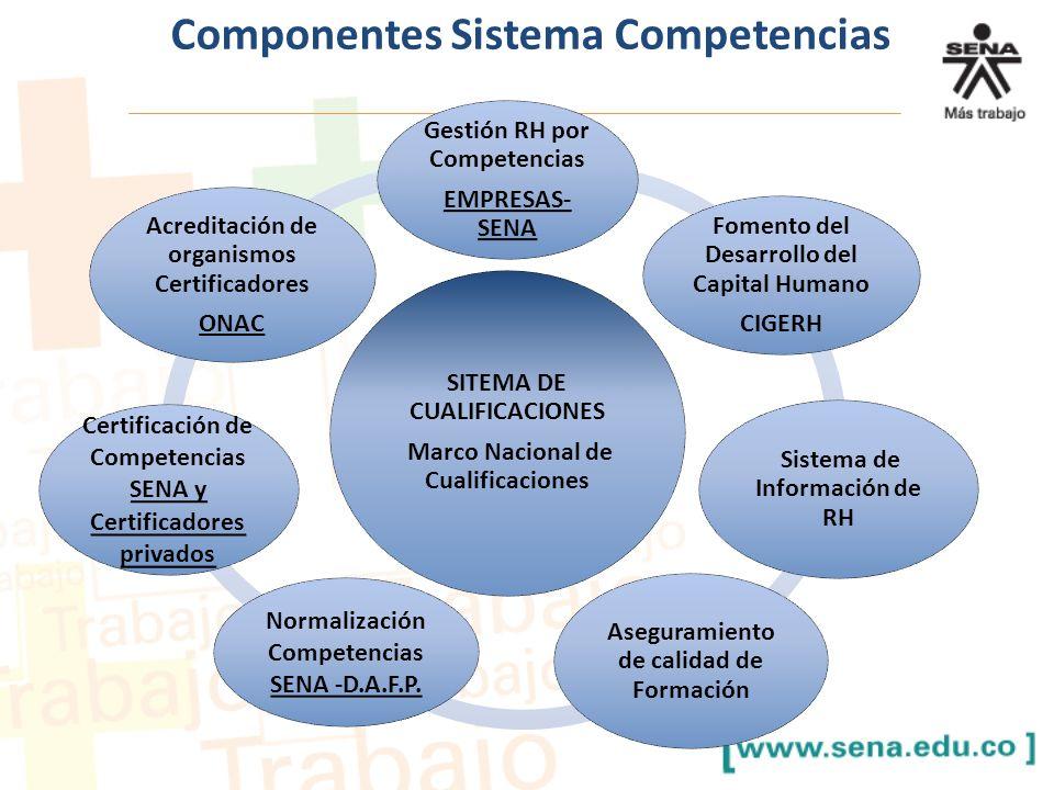 Componentes Sistema Competencias