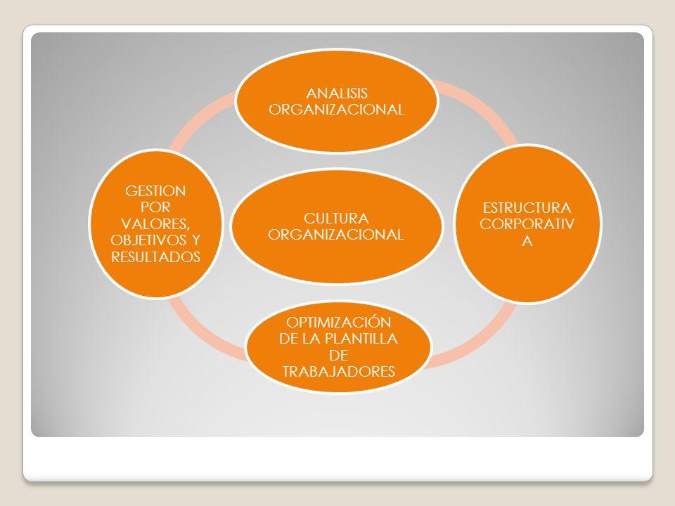 CULTURA ORGANIZACIONAL ANALISIS ORGANIZACIONAL ESTRUCTURA CORPORATIVA