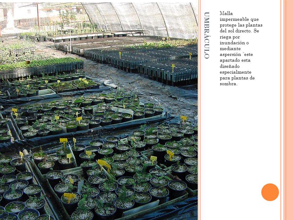 Malla impermeable que protege las plantas del sol directo