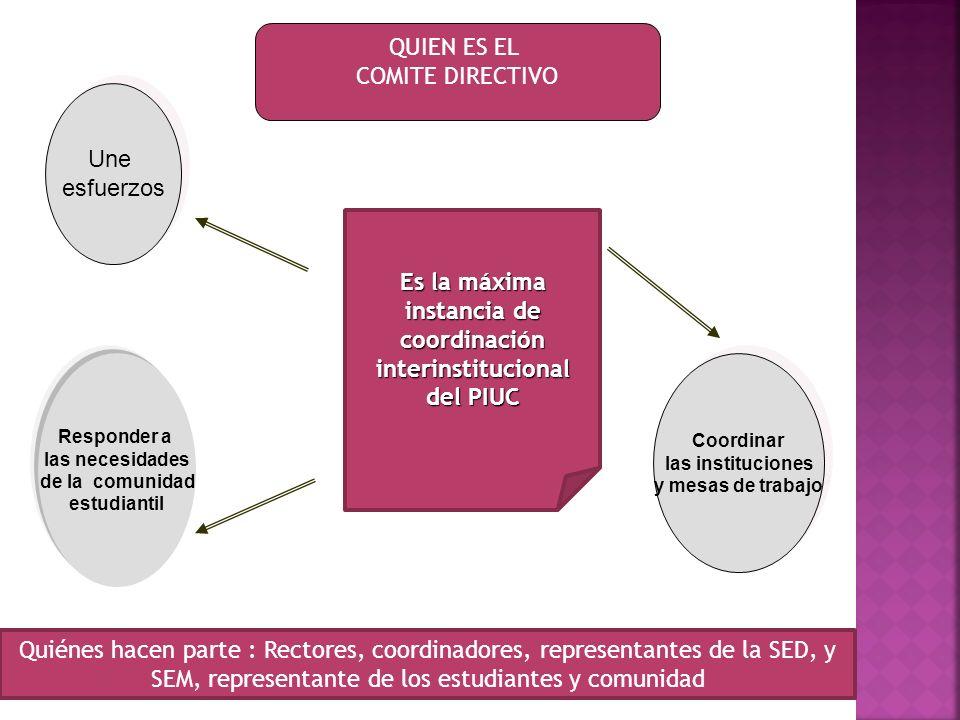 Es la máxima instancia de coordinación interinstitucional del PIUC