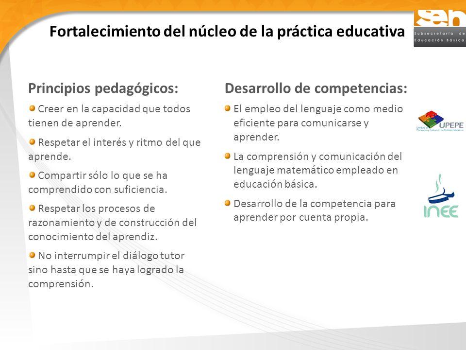 Fortalecimiento del núcleo de la práctica educativa