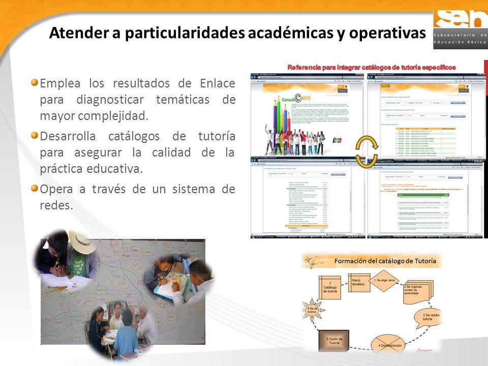 Atender a particularidades académicas y operativas