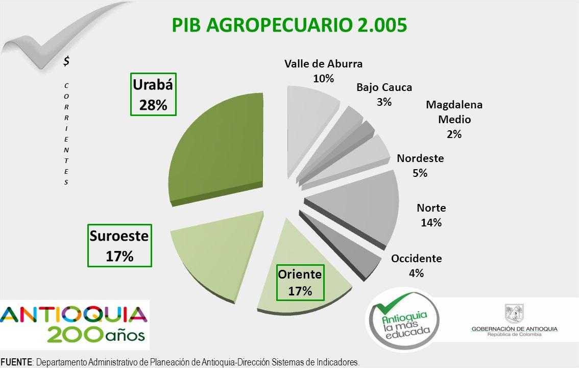 PIB AGROPECUARIO 2.005 FUENTE: Departamento Administrativo de Planeación de Antioquia-Dirección Sistemas de Indicadores.