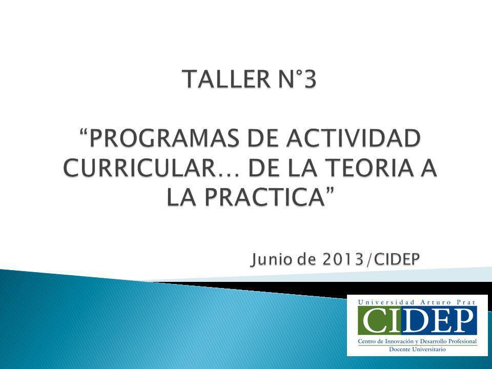 TALLER N°3 PROGRAMAS DE ACTIVIDAD CURRICULAR… DE LA TEORIA A LA PRACTICA Junio de 2013/CIDEP