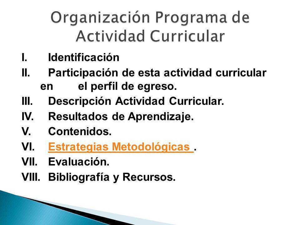 Organización Programa de Actividad Curricular