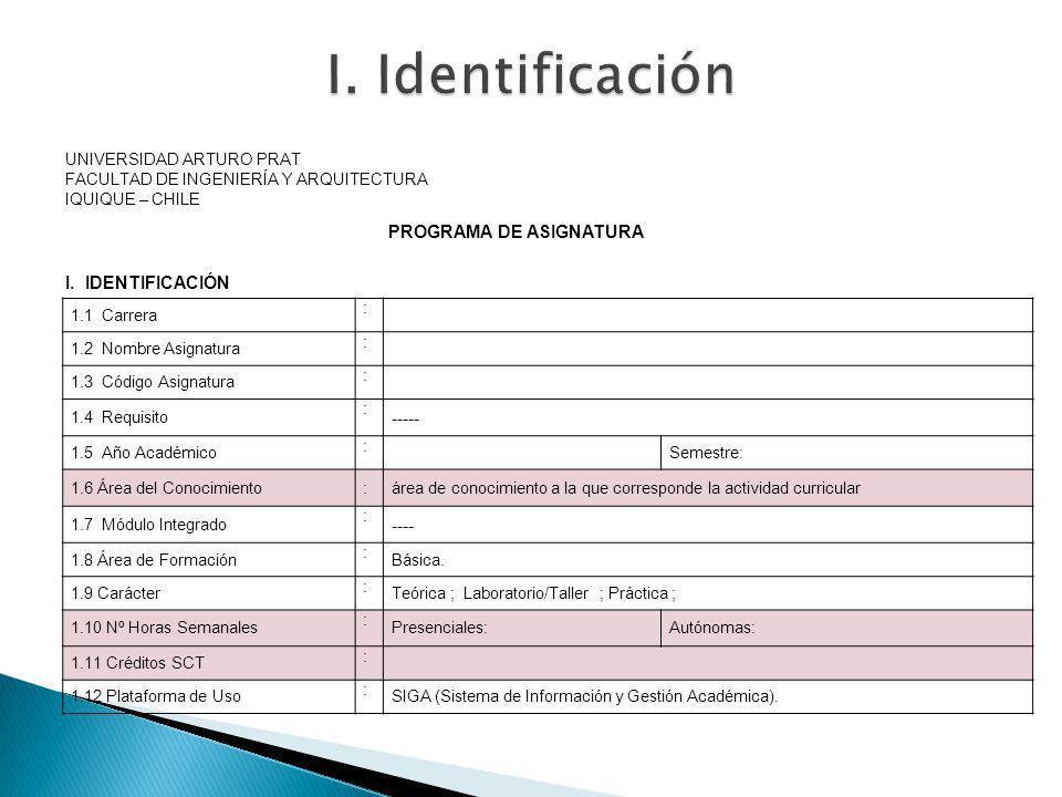I. Identificación I. IDENTIFICACIÓN ----- PROGRAMA DE ASIGNATURA ----