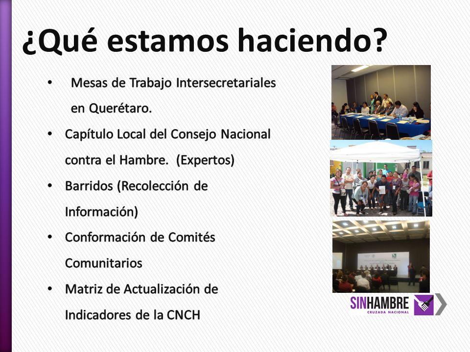 ¿Qué estamos haciendo Mesas de Trabajo Intersecretariales en Querétaro. Capítulo Local del Consejo Nacional contra el Hambre. (Expertos)