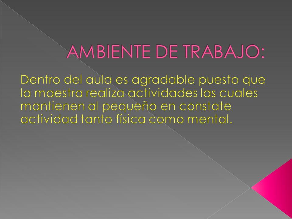 AMBIENTE DE TRABAJO:
