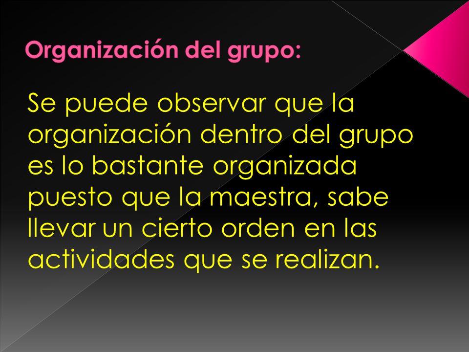 Organización del grupo: