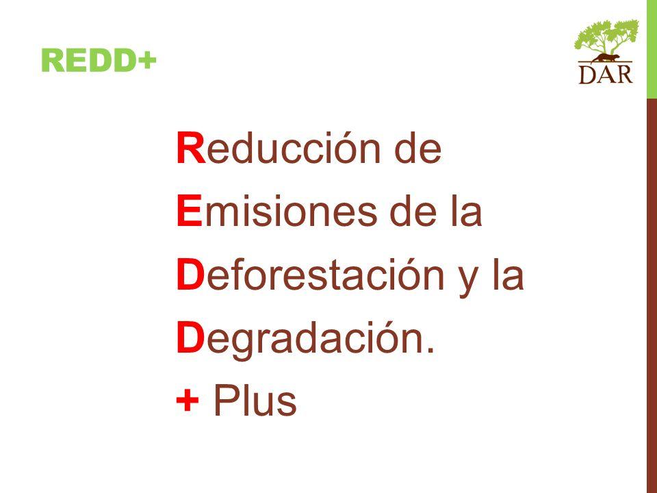 Reducción de Emisiones de la Deforestación y la Degradación. + Plus