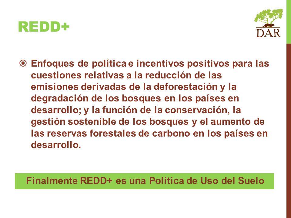 Finalmente REDD+ es una Política de Uso del Suelo