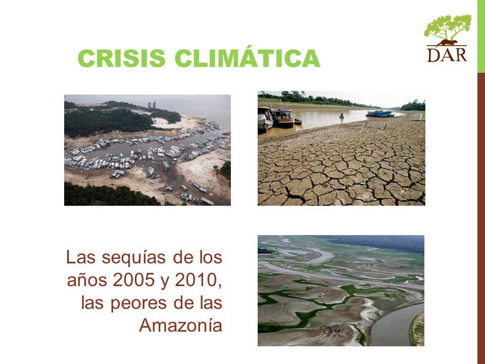 CRISIS CLIMÁTICA Las sequías de los años 2005 y 2010, las peores de las Amazonía