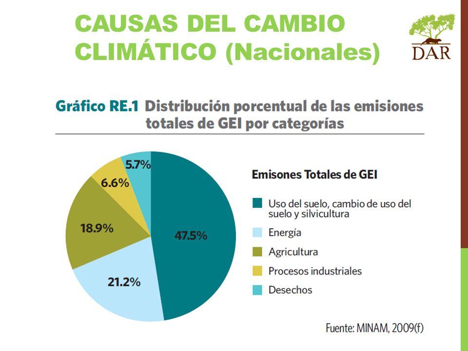 CAUSAS DEL CAMBIO CLIMÁTICO (Nacionales)