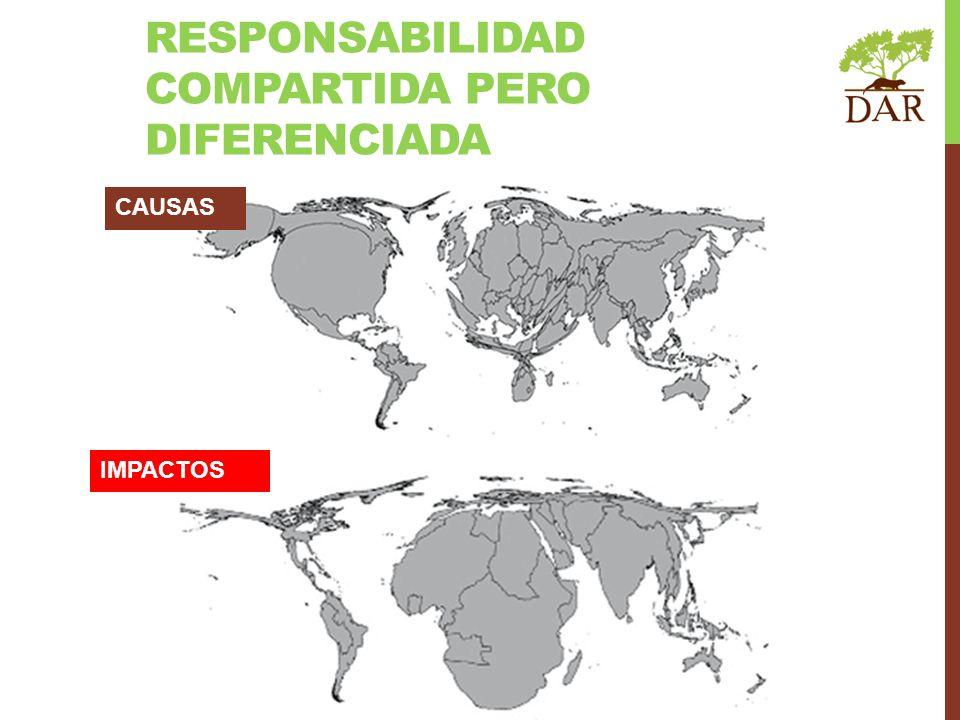 RESPONSABILIDAD COMPARTIDA PERO DIFERENCIADA