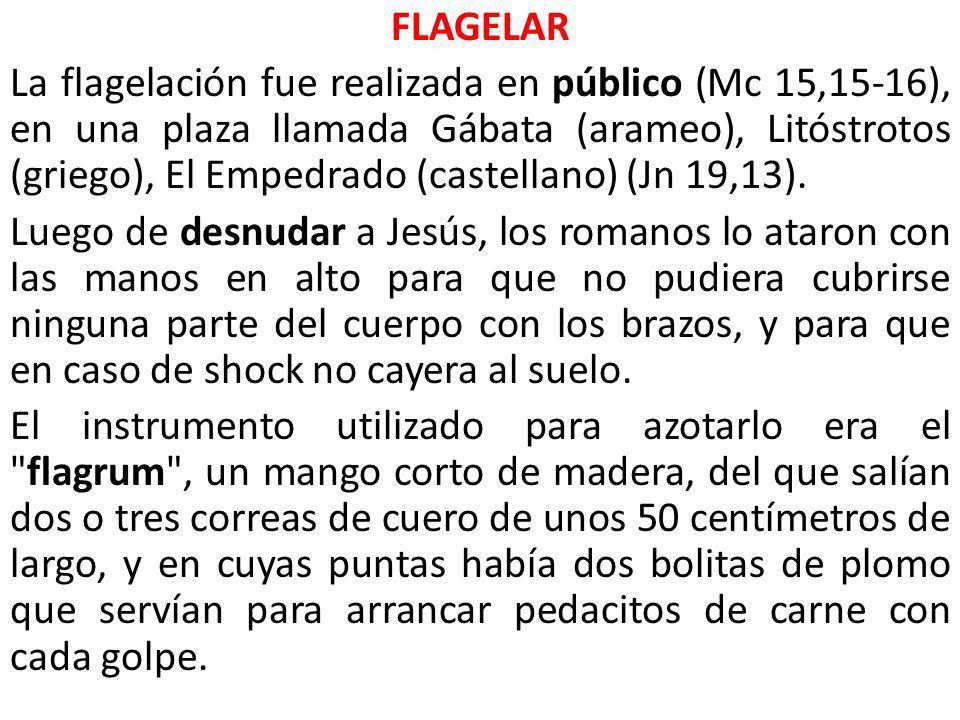 FLAGELAR La flagelación fue realizada en público (Mc 15,15-16), en una plaza llamada Gábata (arameo), Litóstrotos (griego), El Empedrado (castellano) (Jn 19,13).