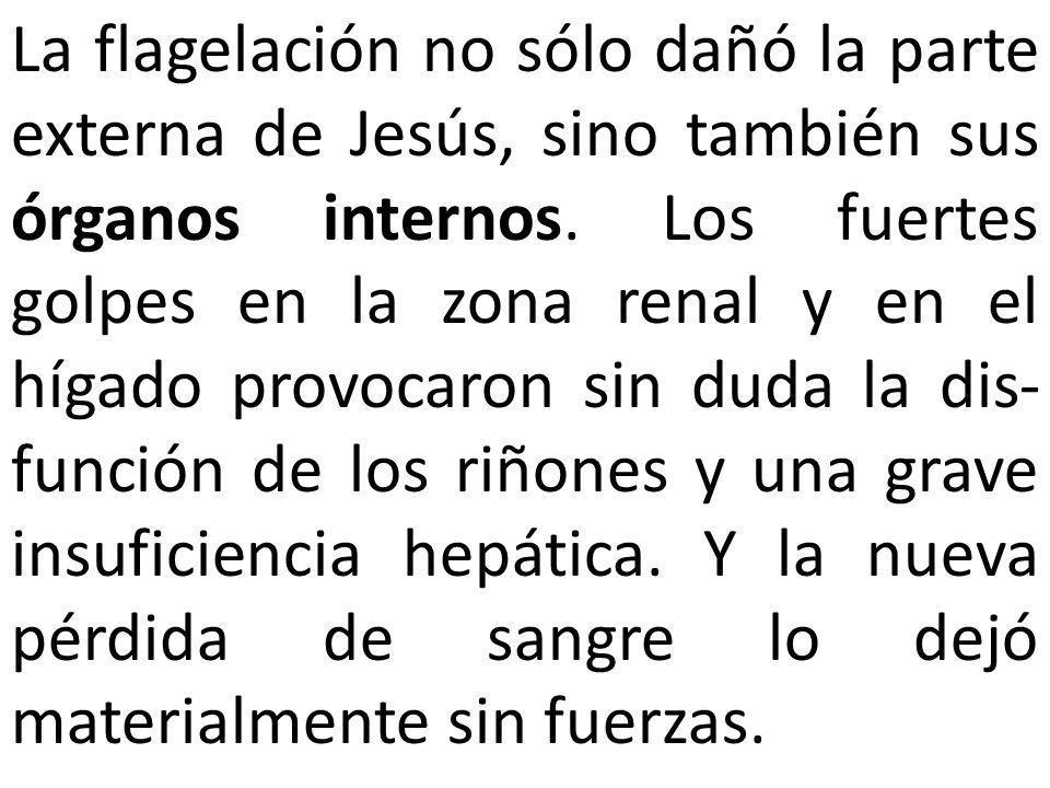La flagelación no sólo dañó la parte externa de Jesús, sino también sus órganos internos.