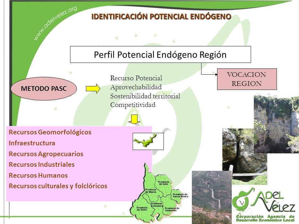 Perfil Potencial Endógeno Región
