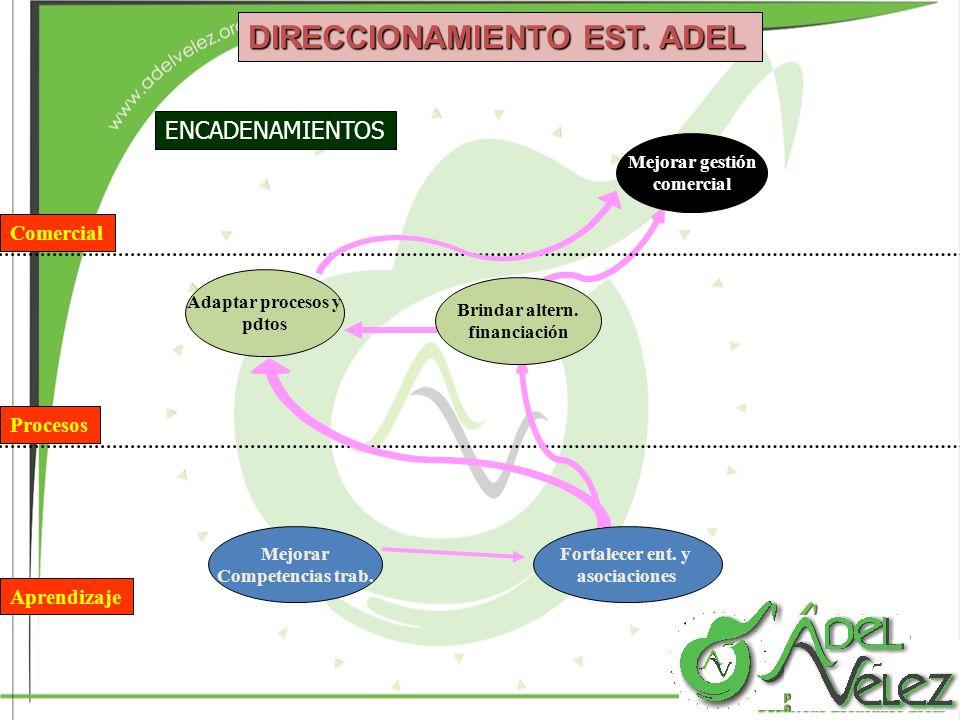 DIRECCIONAMIENTO EST. ADEL