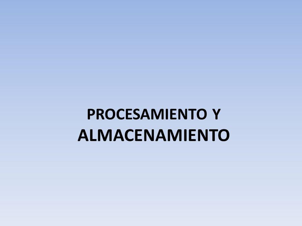 PROCESAMIENTO Y ALMACENAMIENTO