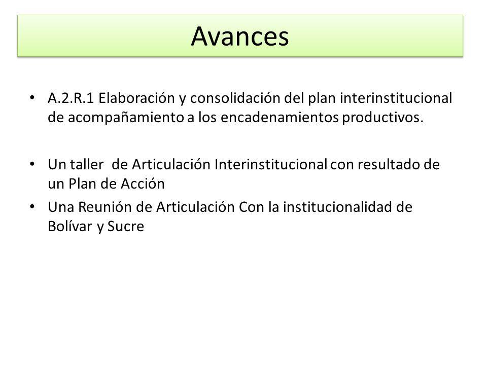 Avances A.2.R.1 Elaboración y consolidación del plan interinstitucional de acompañamiento a los encadenamientos productivos.