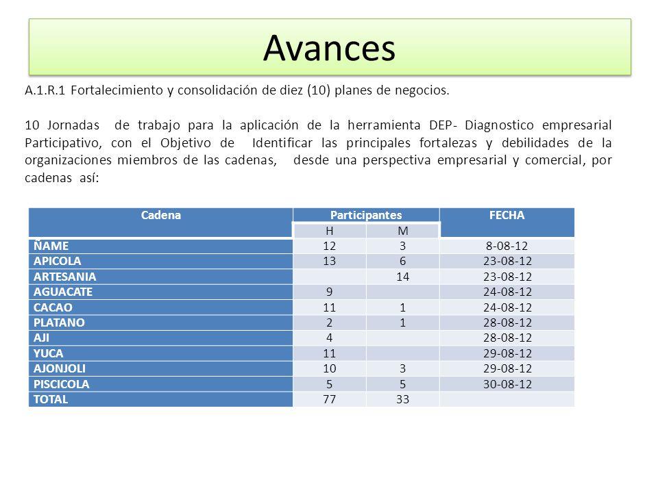 Avances A.1.R.1 Fortalecimiento y consolidación de diez (10) planes de negocios.