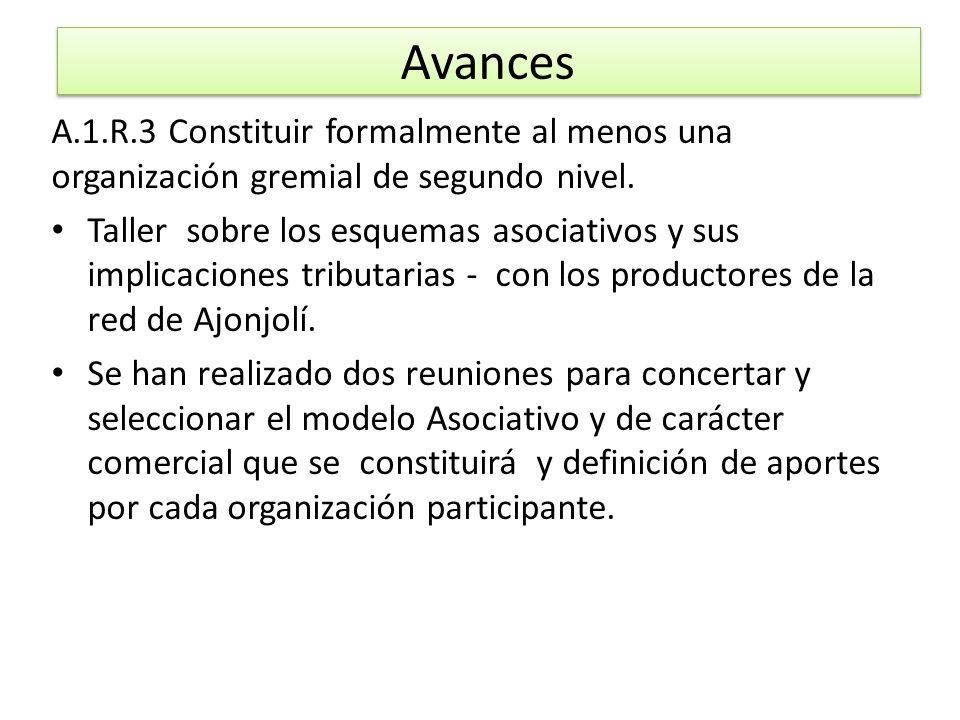 Avances A.1.R.3 Constituir formalmente al menos una organización gremial de segundo nivel.