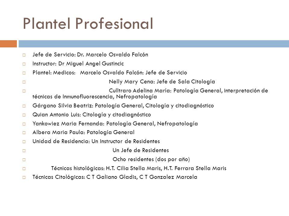 Plantel Profesional Jefe de Servicio: Dr. Marcelo Osvaldo Falcón