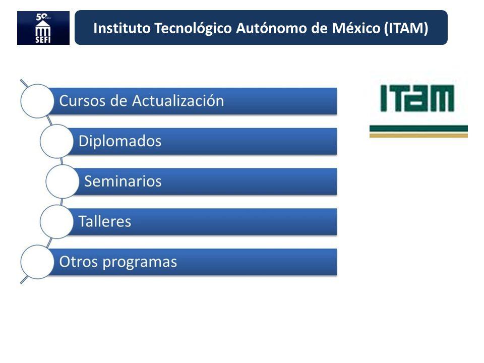 Instituto Tecnológico Autónomo de México (ITAM)
