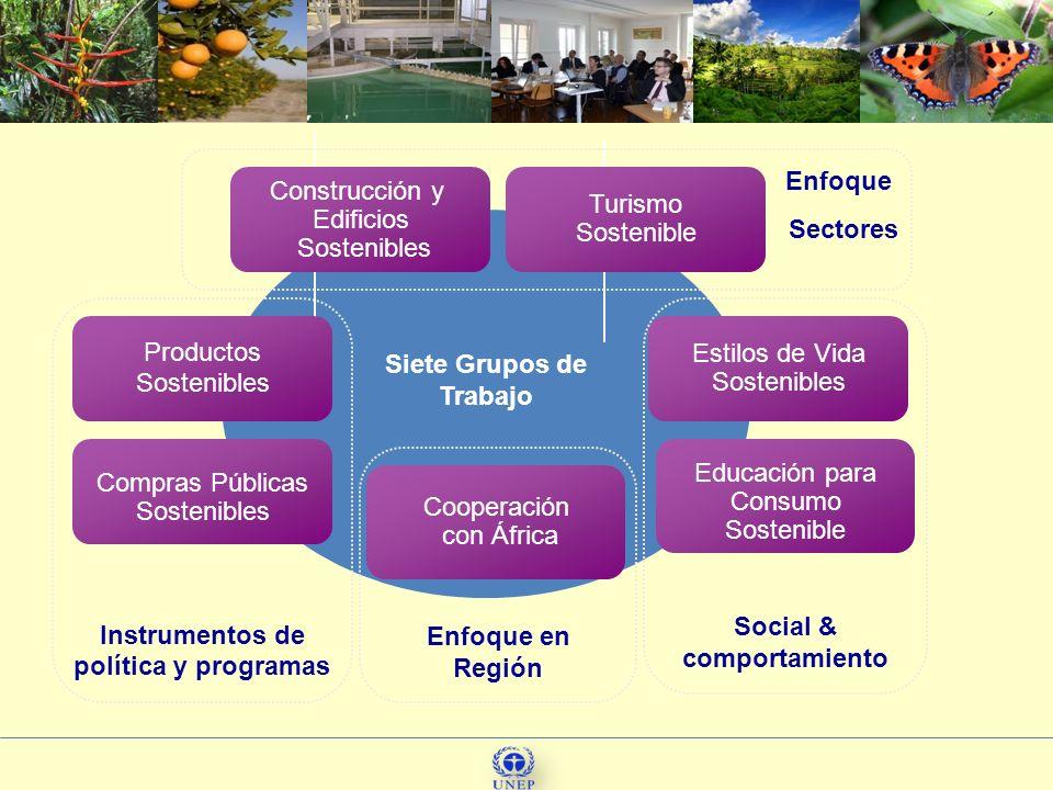 Instrumentos de política y programas Social & comportamiento Productos