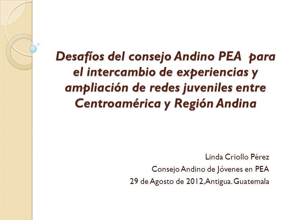 Desafíos del consejo Andino PEA para el intercambio de experiencias y ampliación de redes juveniles entre Centroamérica y Región Andina