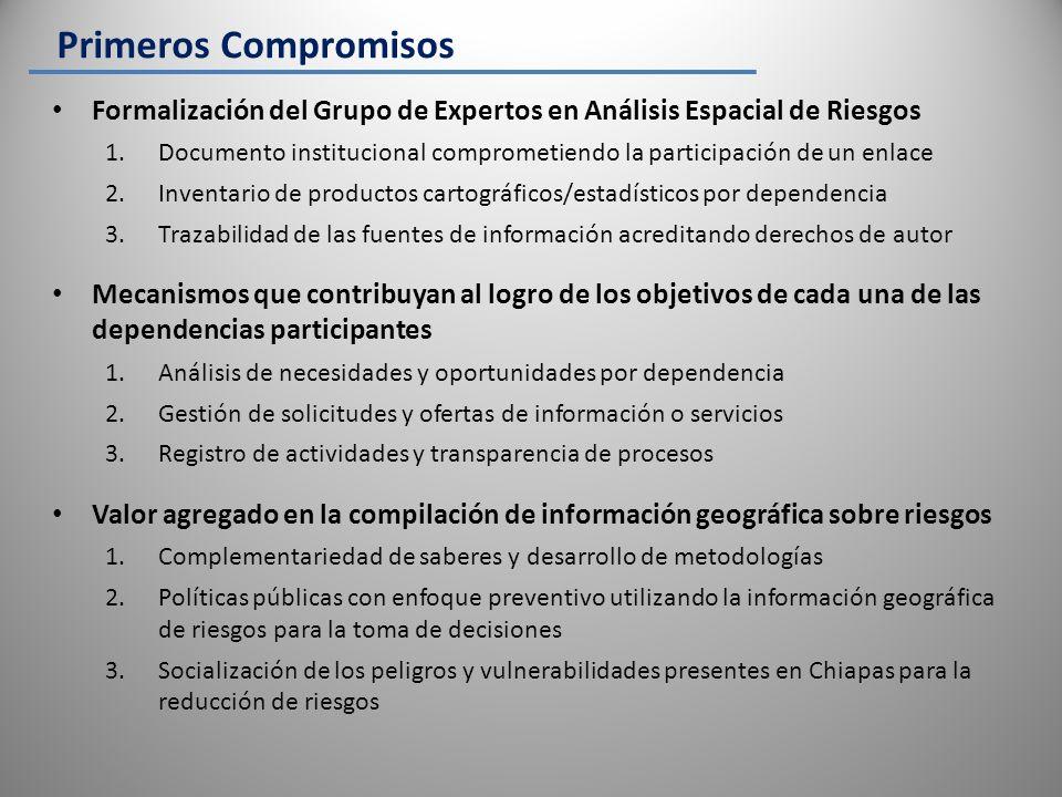 Primeros Compromisos Formalización del Grupo de Expertos en Análisis Espacial de Riesgos.