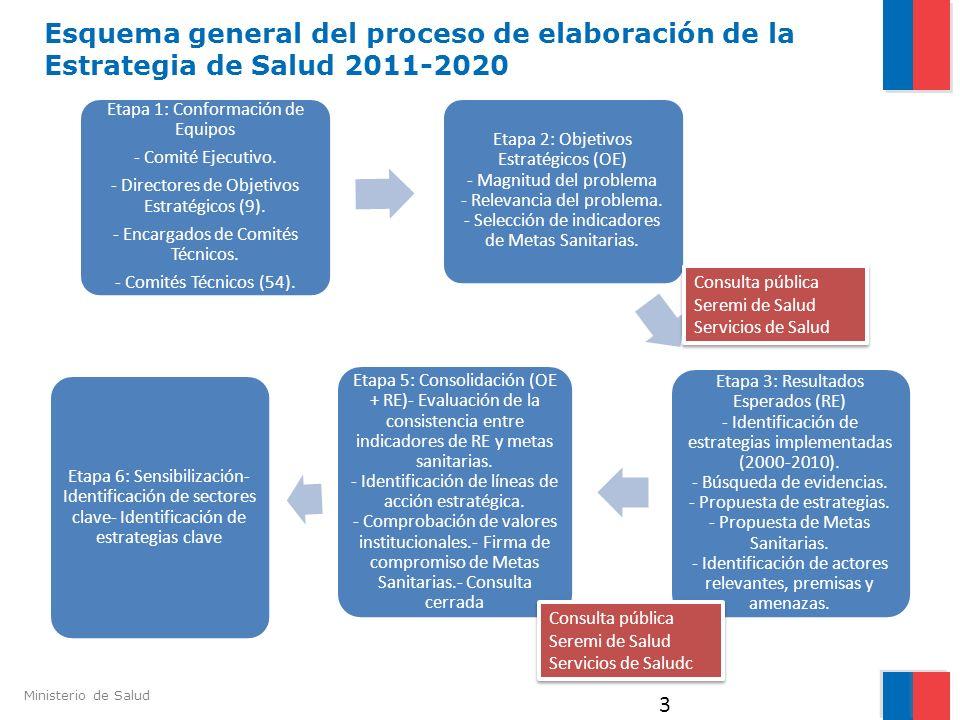 Esquema general del proceso de elaboración de la Estrategia de Salud 2011-2020
