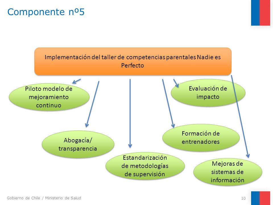 Componente nº5 Implementación del taller de competencias parentales Nadie es Perfecto. Evaluación de impacto.