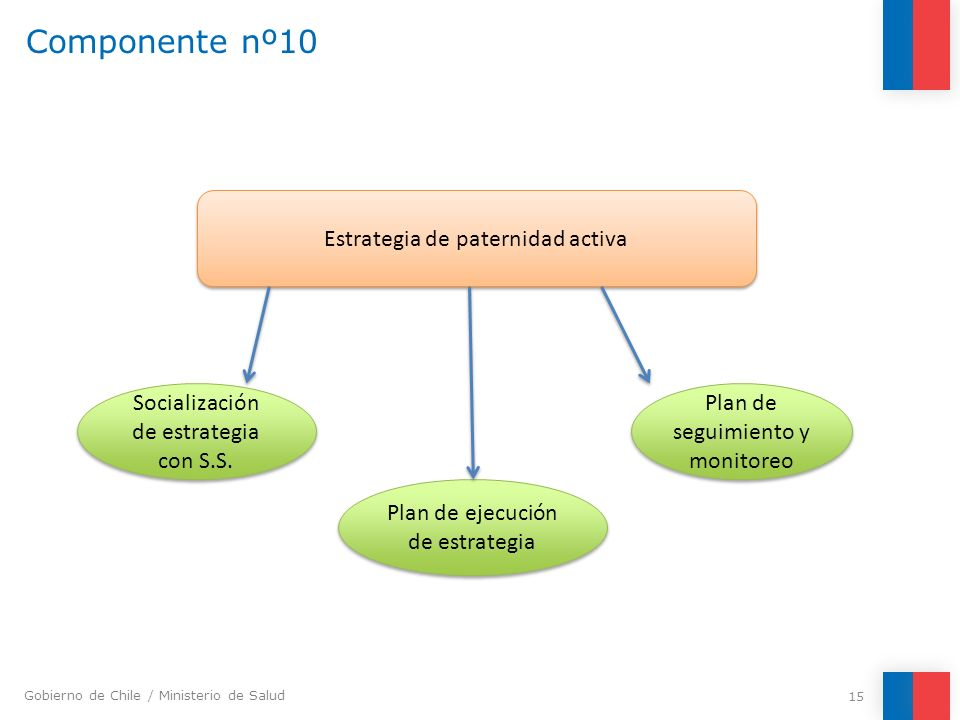 Componente nº10 Estrategia de paternidad activa