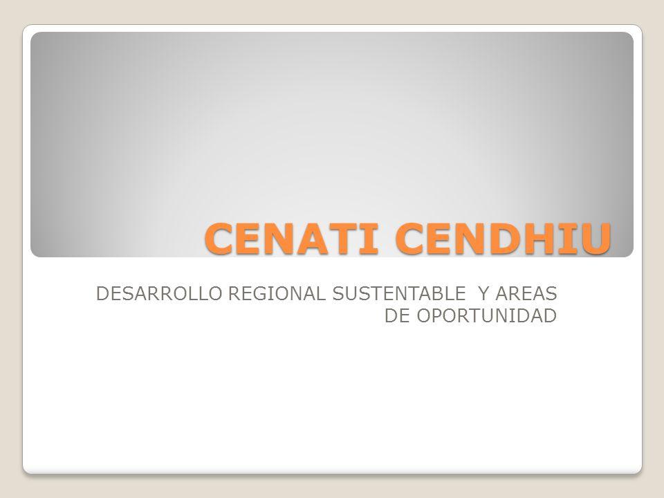 DESARROLLO REGIONAL SUSTENTABLE Y AREAS DE OPORTUNIDAD