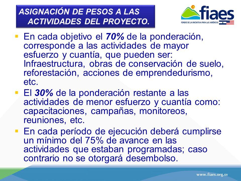 ASIGNACIÓN DE PESOS A LAS ACTIVIDADES DEL PROYECTO.