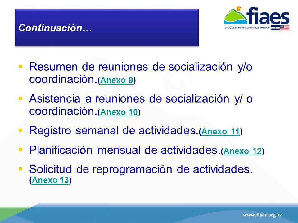 Resumen de reuniones de socialización y/o coordinación.(Anexo 9)