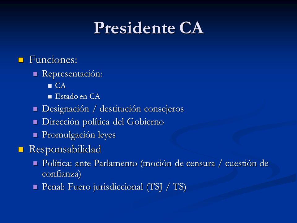 Presidente CA Funciones: Responsabilidad Representación: